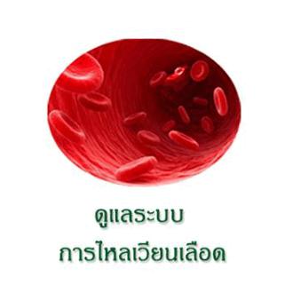 เห็ดหลินจือ ดูแลระบบการไหลเวียนของเลือด