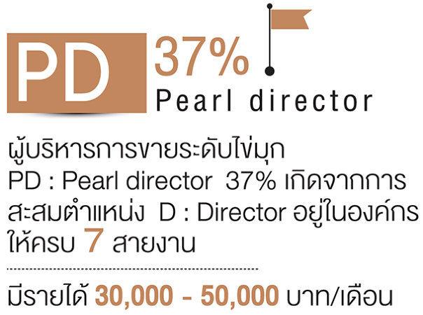 ขึ้นตำแหน่ง pd 31%